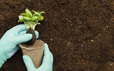 Irrigation Installation & Repairs