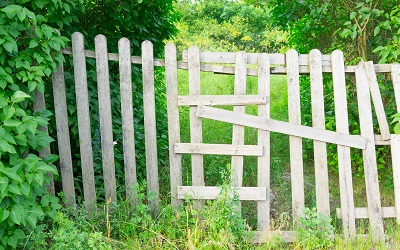 Fence Installation & Repaires & Staining