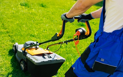 Lawn Maintenance Weekly